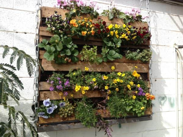 Pallet Green Wall Pallet Planters & Compost Bins