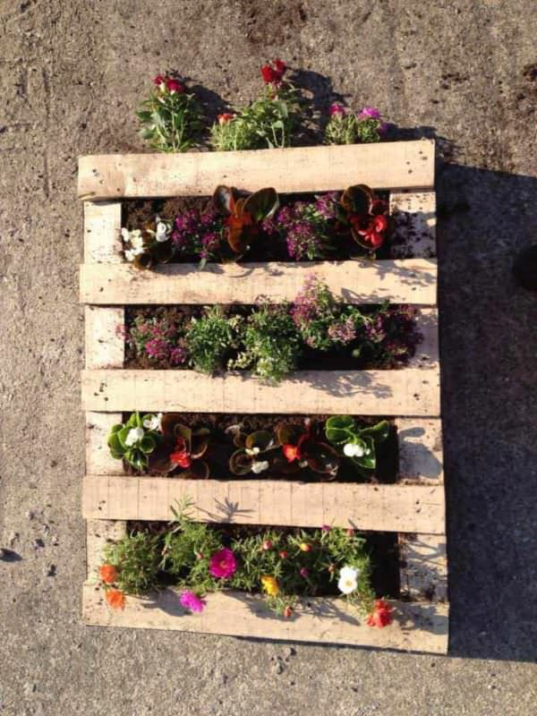 3 Steps to Prepare Your Vertical Pallet Planter Pallet Planters & Compost Bins