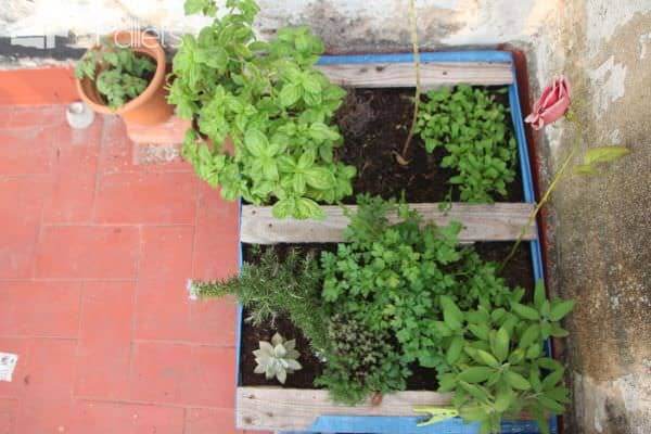 Vegetable & Herbs Garden Planter Made From Wooden Pallet Pallet Planters & Compost Bins