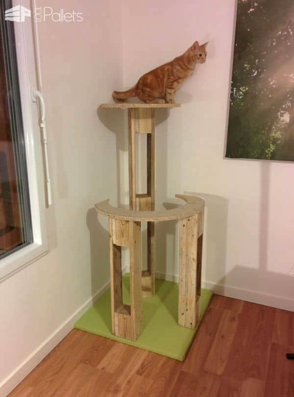 Pallet Cat Scratching Tree / Arbre à Chat Animal Pallet Houses & Pallet Supplies