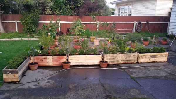 Planter Boxes For Hedging Pallet Planters & Compost Bins