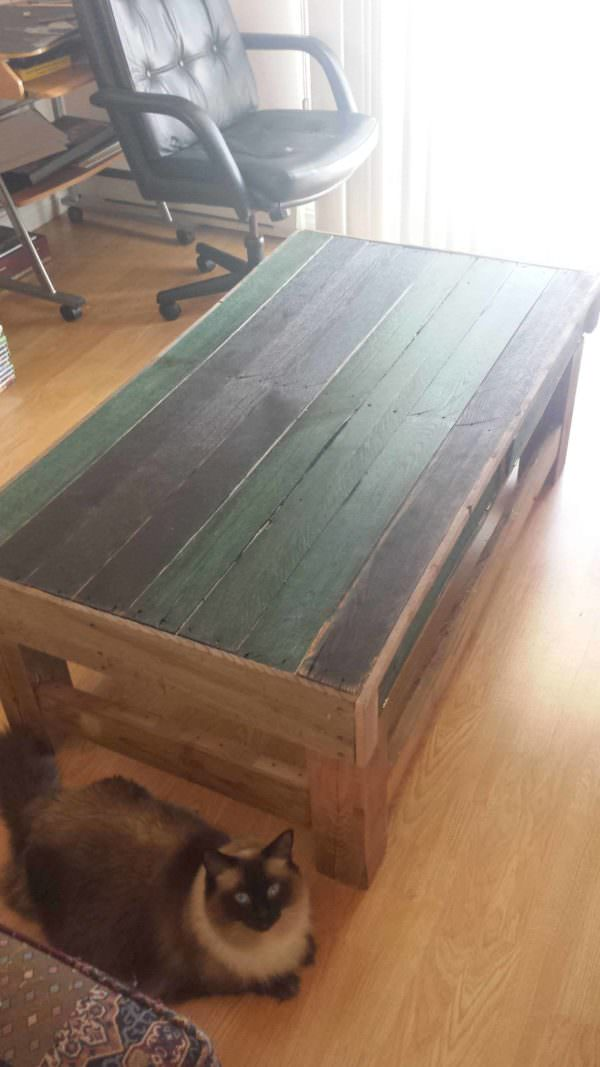 My First Pallet Project Is a Coffee Table Pallet Coffee Tables