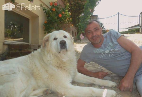 Pallet Crafter Interview #14: Alessandro Fargnoli Pallet Crafter Interviews