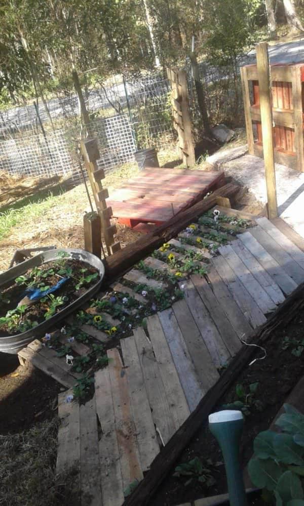 Budget Gardening Using Pallets Several Ways Pallets in the Garden