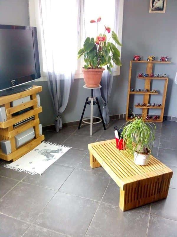 Design One-pallet Shelf / Etagère En Palettes Pallet Shelves & Pallet Coat Hangers
