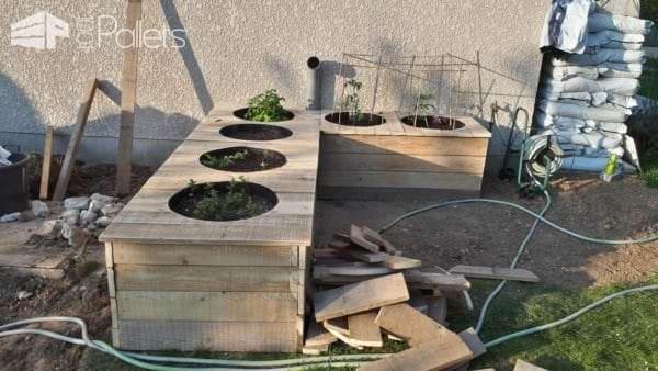 Raised Vegetable Garden From Pallet & Formwork Planks Pallet Planters & Compost Bins