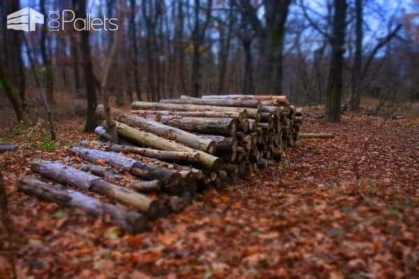 Firewood for Sale: How to Find & Choose It? Other Pallet Projects Workshop and tools