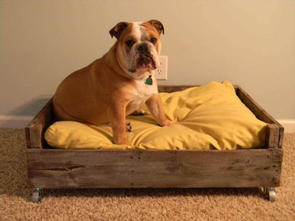 40+ Diy Pallet Dog Bed Ideas Animal Pallet Houses & Pallet Supplies
