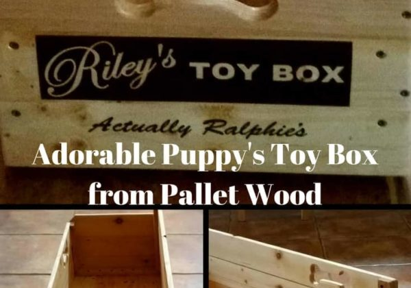1001pallets.com-riley-amp-ralphie-s-pallet-wood-puppy-toy-box-05