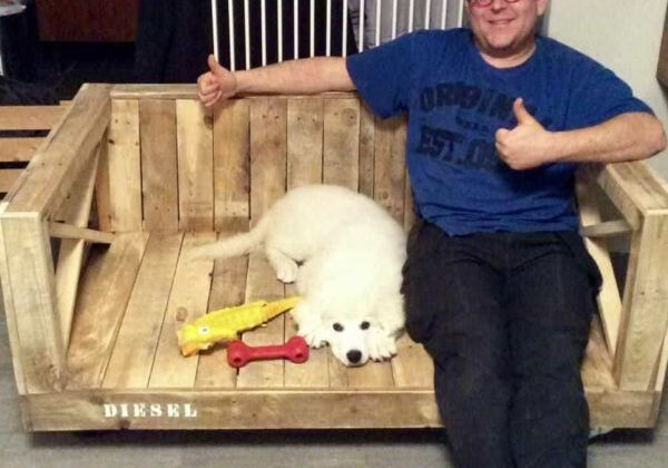 1001pallets.com-rolling-outdoor-pallet-dog-bench-your-dog-may-share-with-you-01