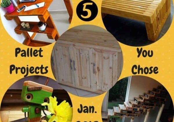 1001pallets.com-top-5-pallet-projects-made-in-january-2018-06